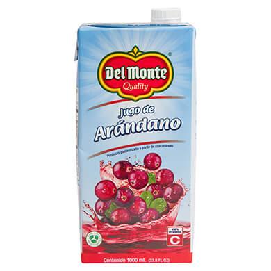 DEL MONTE JUGO DE ARANDANOS 1000ML
