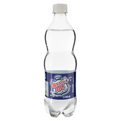 REFRESC GAS SODA CANADA DRY PET 600ML